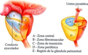 dosis de ciprofloxacina para la prostatitis